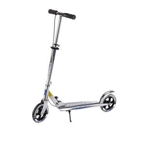 flamingo-scooter-2020V