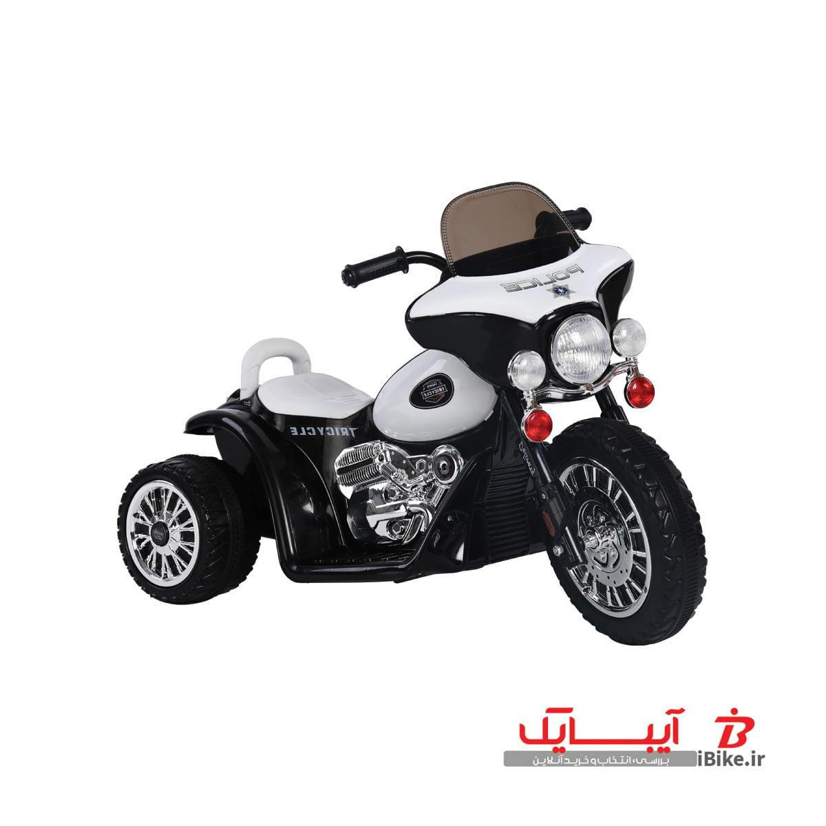 flamingo-shargaeablemotor-568