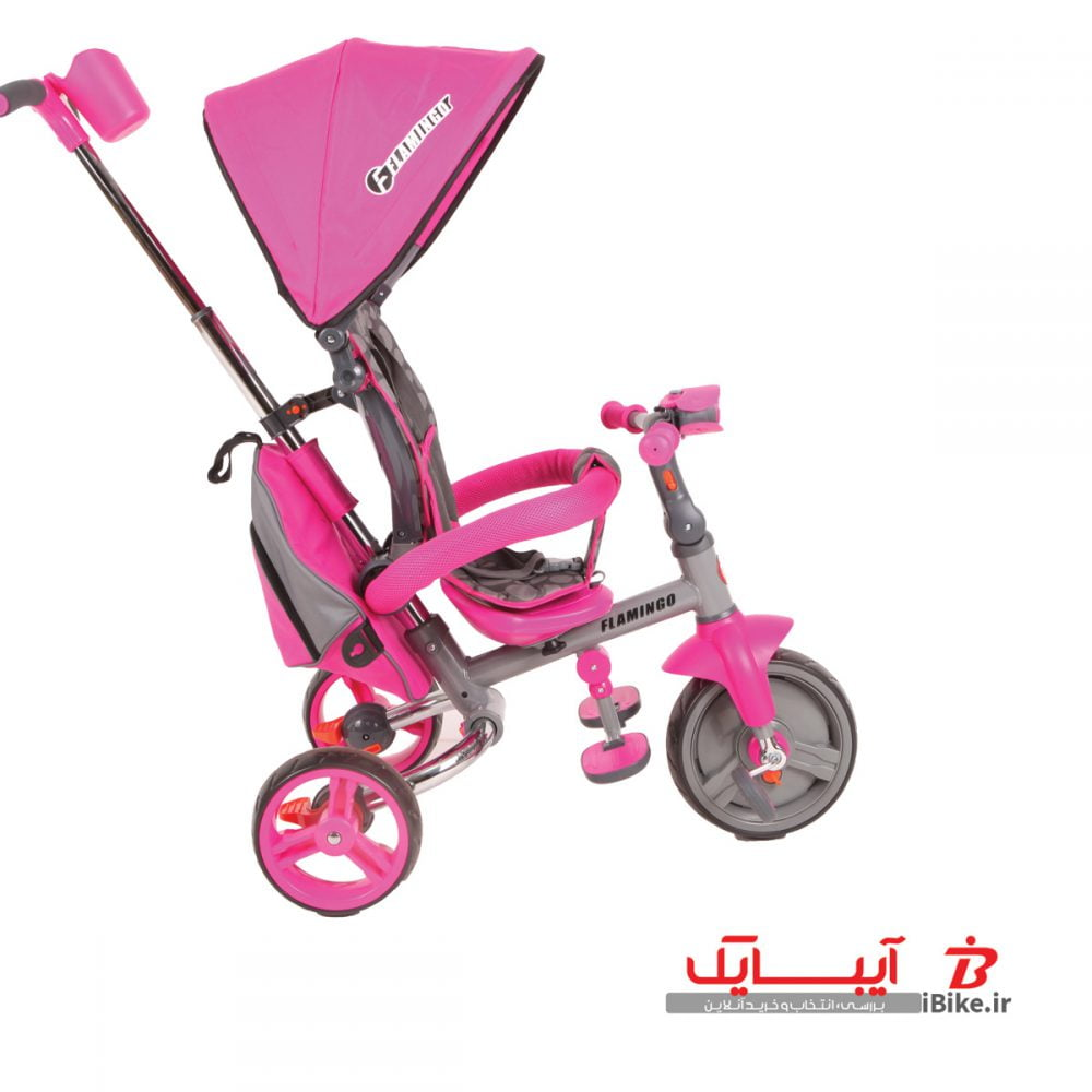 flamingo-tricycle-T310-3