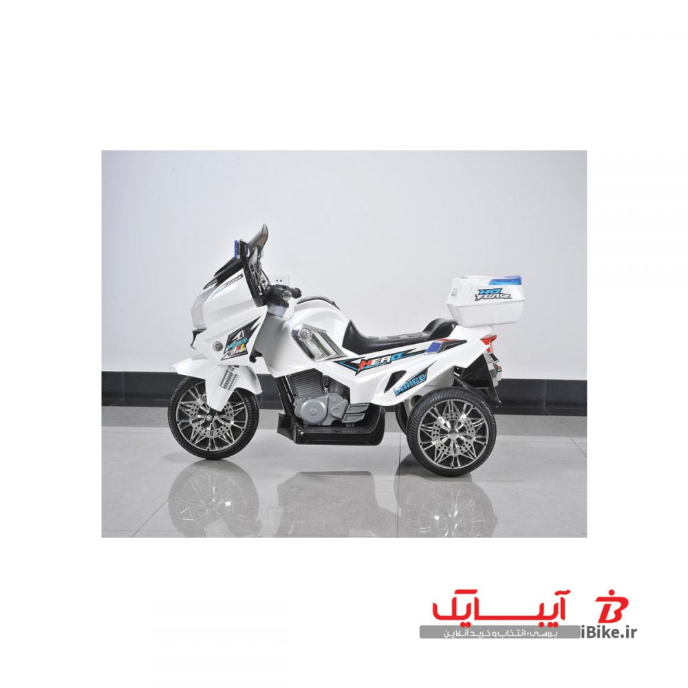 flamingo-shargaeablemotor-BDM-0907-3