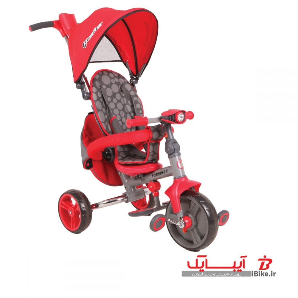 flamingo-tricycle-T310-5
