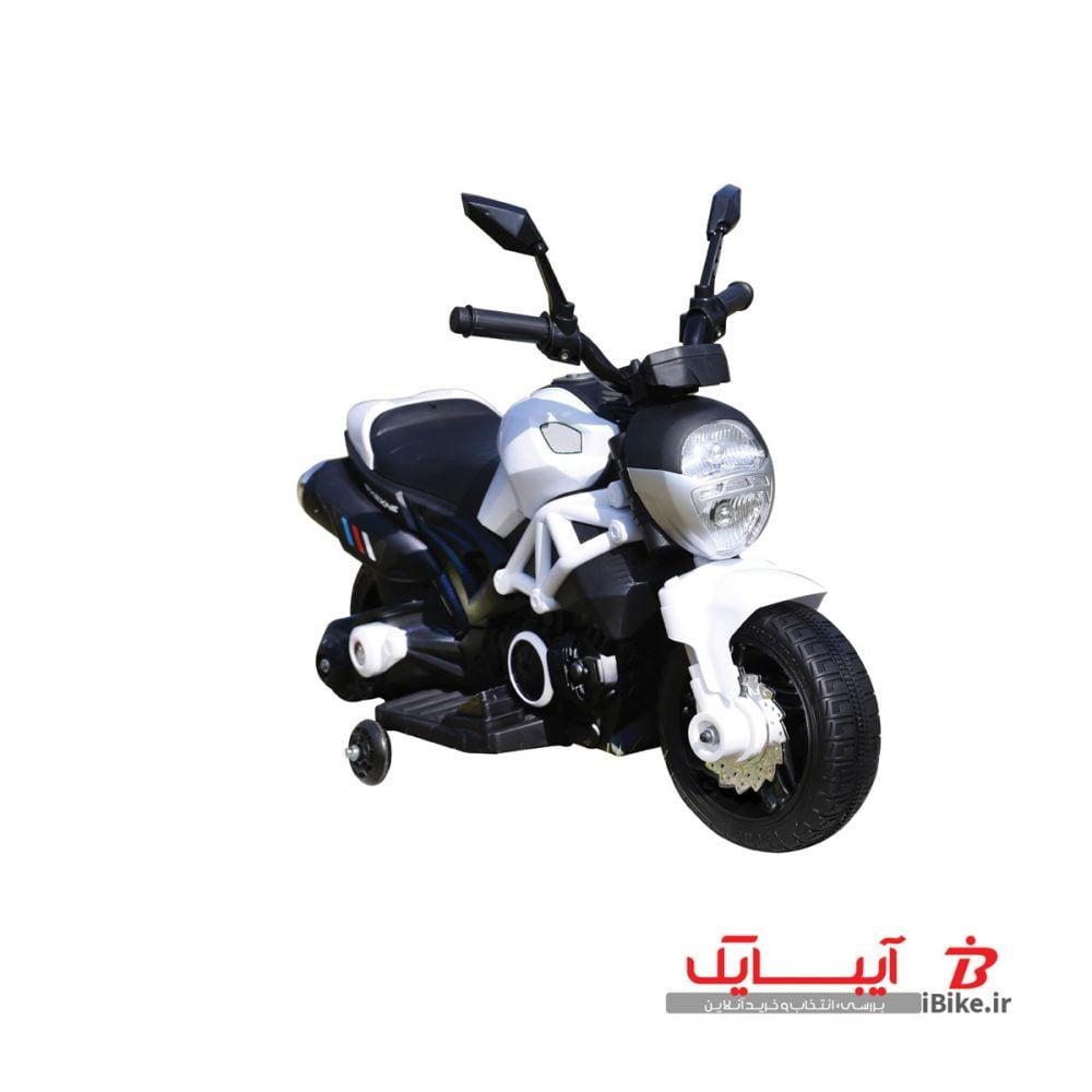 -1flamingo-shargaeablemotor-1188