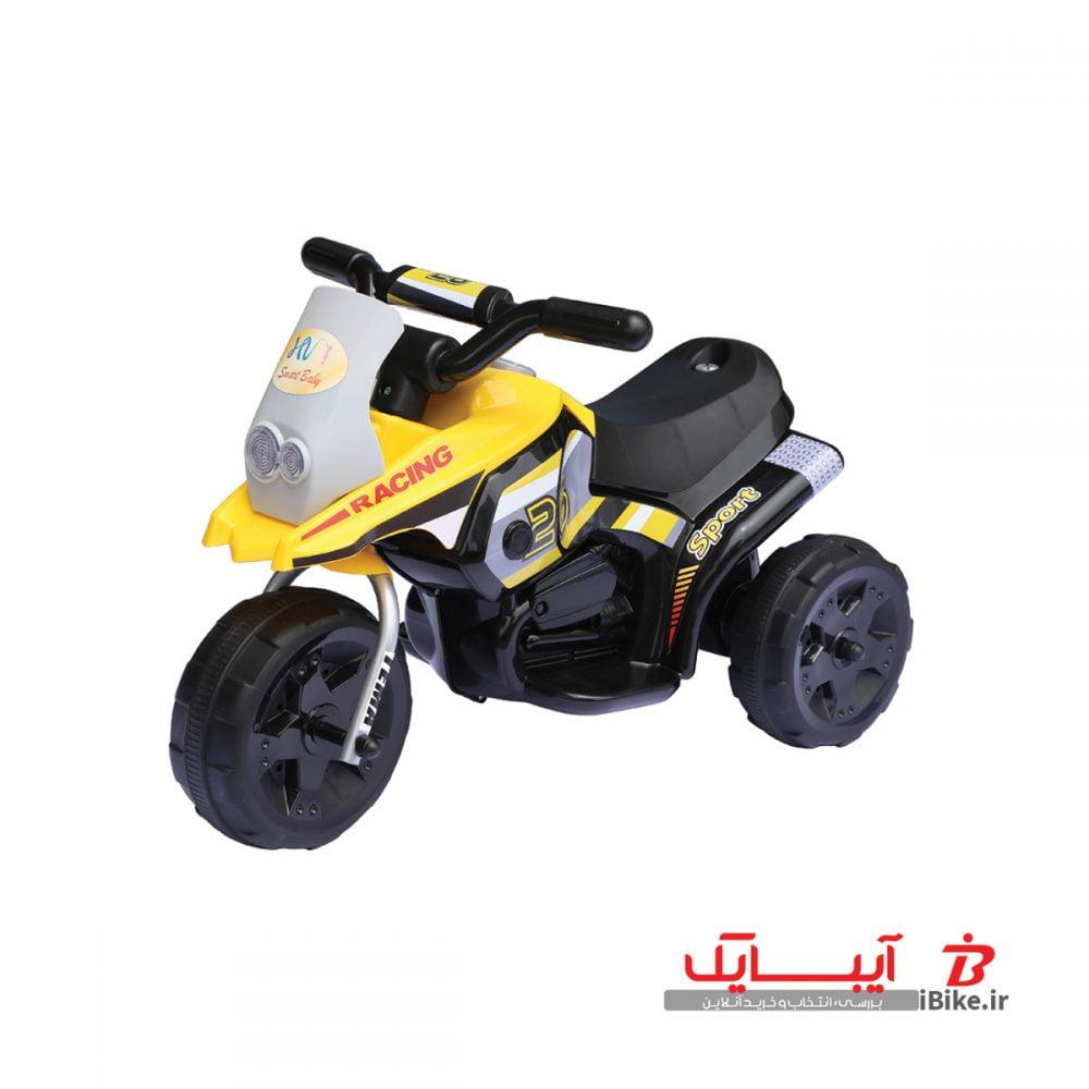 flamingo-shargaeablemotor-318-2