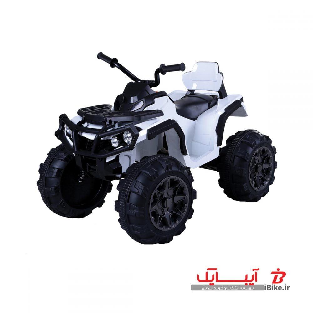 flamingo-shargaeablemotor-906-4