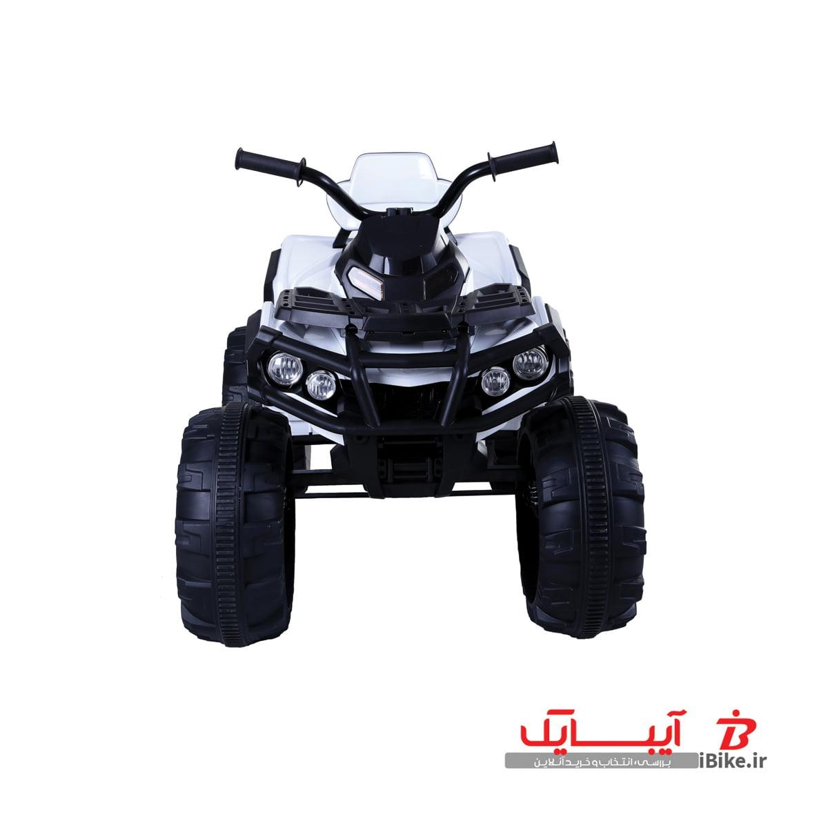 flamingo-shargaeablemotor-906-5